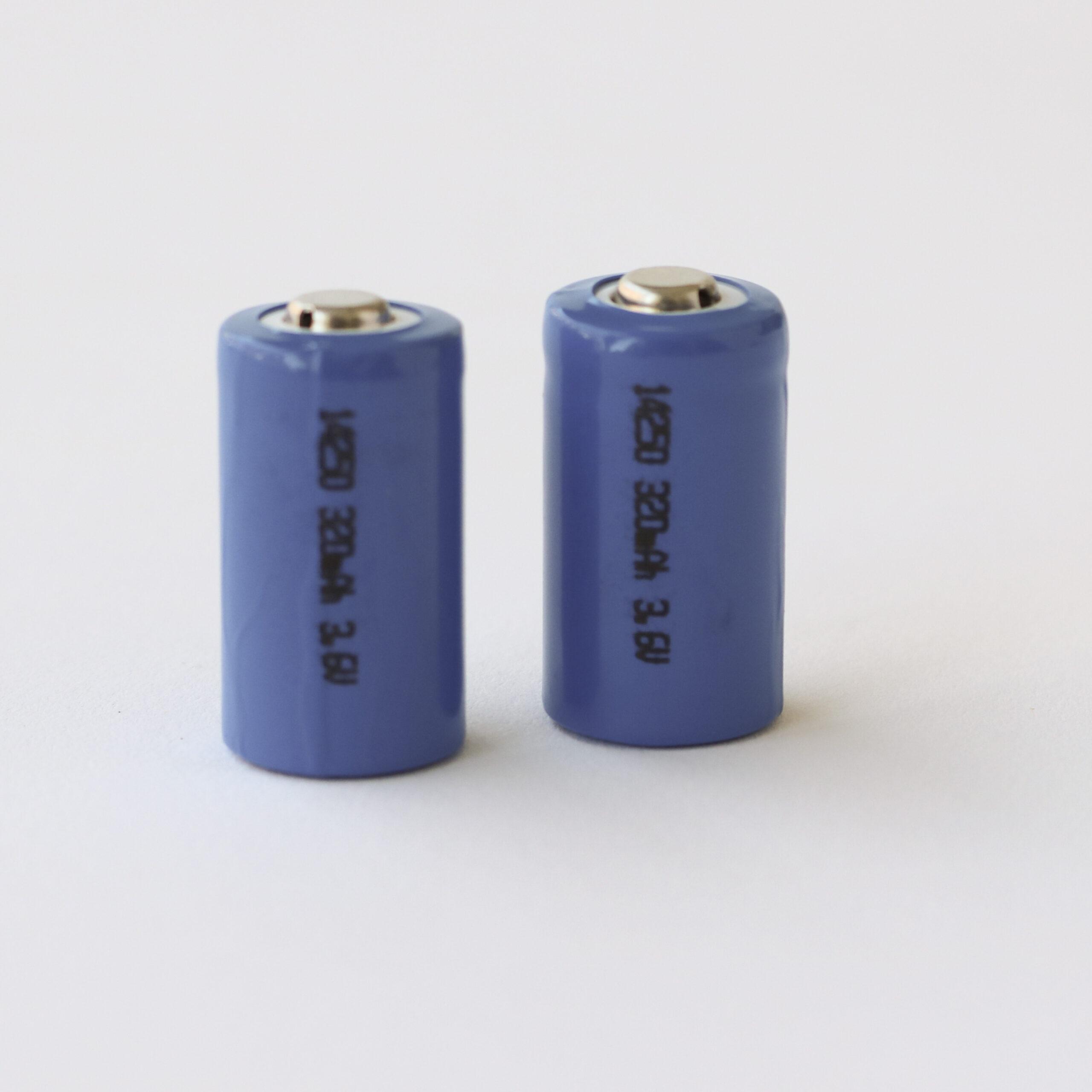 Rechargeable Lithium Ion Batteries FETB Hoggan Scientific